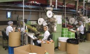 ריצפת הייצור של מפעל התה של ויסוצקי